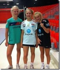 Larvik HK - håndballskole